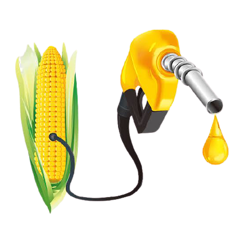 How To Start Biofuel Production Business in Nigeria or Africa: